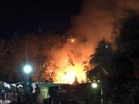 Alanya'da Devrilen Çam Ağaçları Yangına Sebep Oldu