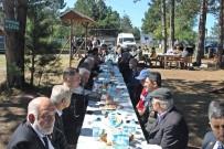 HÜKÜMET KONAĞI - Araç'ta Gaziler, Piknikte Bir Araya Geldi