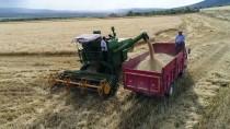 DOĞU ANADOLU - Bulgur Üreticilerinin 'Kurutma' Mesaisi