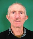 Hisarcık'ta Ceviz Ağacından Düşen Yaşlı Adam Hayatını Kaybetti