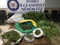 Manisa'da Uyuşturucu Operasyonu Açıklaması 1 Kişi Tutuklandı
