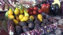 Tarımın 'Renkli' Dünyası En Büyük Hobisi