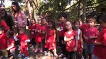 HAYVANAT BAHÇESİ - Uluslararası Kırmızı Panda Günü