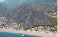 Vali Karaloğlu Açıklaması 'Orman Yangınıyla İlgili Her Türlü Soruşturma Titizlikle Yürütülüyor'