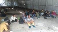 GÖÇMEN KAÇAKÇILIĞI - Van'da 48 Kaçak Göçmen Yakalandı
