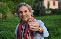 HILMI ÖKSÜZ - Başkan Demircan Köyünde Çay Topladı