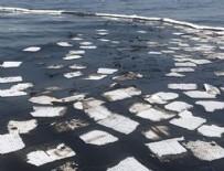 PARMAK İZİ - Foça'da denize sızan ayaryakıtın fuel-oil olduğu belirlendi