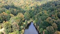OSMANLı DEVLETI - Domaniç Dağları'nda Sonbaharın İlk Renkleri