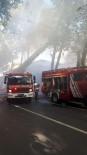 RESTORASYON - Feriye Sinemasının Çatısında Yangın Çıktı