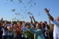 DERYA BAKBAK - Gastronomi Festivali Biber Hasadı İle Başladı