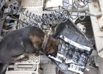 'İmge' 3 Bin 881 Paket Kaçak Sigara Buldu