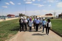 BELEDİYE BAŞKAN YARDIMCISI - Japon İşbirliği Aajansı'nın Yetkilileri Kilis'te Atık Su Arıtma Tesisini Ziyaret Etti