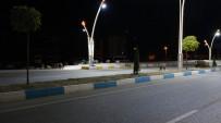 Tunceli'de Merkeze İnen Yaban Domuzları Görüntülendi