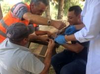 Yaralı Balıkçıl Hayata Döndürüldü