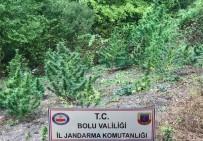 Bolu'da Uyuşturucu Operasyonu Açıklaması 6 Gözaltı