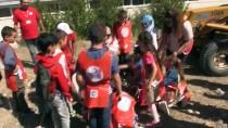 YENI YıL - Çocuklar Barış Dileklerini Toprağa Gömdü