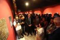 DERYA BAKBAK - Gastroantep Festivali'nde 'Tohum' Sergisi Açıldı