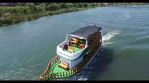 OSMANLı DEVLETI - Yeşilırmak'ta 70 Yıl Sonra Tekne Gezileri Başladı