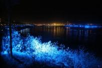 KANALİZASYON - Burası Cizre Açıklaması Kayyumla Artık Işıl Işıl