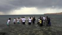 VAN GÖLÜ - Çarpanak Adası'na Antik Yoldan Yüzerek Ulaştılar