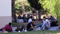 KUMLUOVA - Muğla'da 53 Düzensiz Göçmen Yakalandı