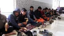 İPEKYOLU - Van'da 147 Düzensiz Göçmen Yakalandı