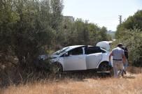 CINAYET - Antalya'daki Cinayette 1 Gözaltı