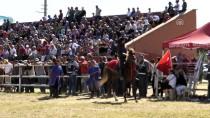 BELEDİYE BAŞKANLIĞI - Safkan Atlar Yarıştı, Okçular Gösteri Sundu