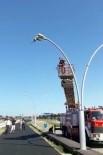 SAHİL YOLU - Sokak Lambasına Ayağı Takılan Martı Kurtarıldı