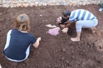 KÜRATÖR - Diri Diri Toprağa Gömüldüler