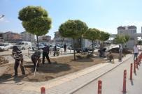 HASTANE - Karaman Devlet Hastanesinde Çevre Düzenleme Çalışması