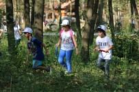 DOĞAL YAŞAM PARKI - Ormanya'da Bilime Büyük İlgi