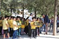 Bucak'ta Okul Bahçelerine Kuş Yuvası