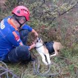 MAHSUR KALDI - Kayalıklarda Mahsur Kalan Köpeğe AFAD Şefkati