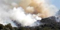 Yenipazar'daki Yangın Kontrol Altına Alındı