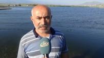 ASI NEHRI - Asi Nehri'nde Balıklar Oksijen Yetersizliğinden Telef Olmuş