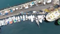 BALIK FİYATLARI - Balıkçılardan 'Kestane Karası Fırtınası' Önlemi