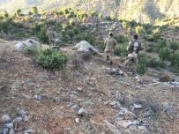 YAĞCıLAR - Kaybolan Engelli Vatandaşı Jandarma Buldu