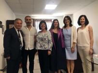KOLON KANSERİ - 'Kekik Kanser Tedavisinde Etkin Rol Oynuyor'