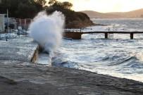 'Kestane Karası' Rüzgarı Hayatı Olumsuz Yönde Etkiliyor