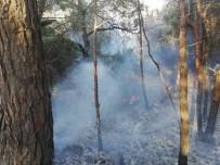 DİLEK YARIMADASI - Kuşadası Dilek Yarımadası Milli Parkı'nda Yangın