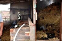 BÜYÜKBAŞ HAYVANLAR - Sarıgöl'de Samanlık Yangını