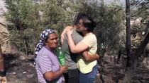 Yenipazar'da Zeytinlik Alanda Yangın