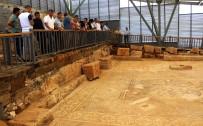 MEHMET ALKAN - 1500 Yıllık Mozaik Görücüye Çıktı