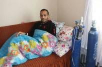 Silikozis Hastalığından Türkiye'de 71, Bingöl'de 19'Uncu Ölüm