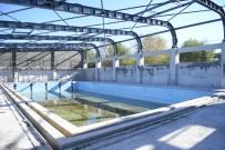 Yeni Karaman Yüzme Havuzu Yenileniyor