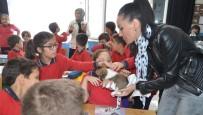 HAYVANLARI KORUMA DERNEĞİ - Bafra'da İlkokul Öğrencilerine Hayvan Sevgisi Aşılanıyor