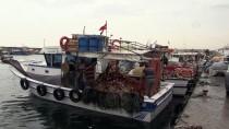 METEOROLOJI GENEL MÜDÜRLÜĞÜ - Egeli Balıkçıların 'Tropik Fırtına' Hazırlığı