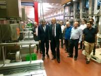 PLAN BÜTÇE KOMİSYONU - Milletvekili Koçer, Halı Ve Makine Üreticileri İle Bir Araya Geldi