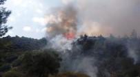 KOCADERE - Yenipazar'da 3 Gün Arayla Aynı Bölgede 2. Yangın